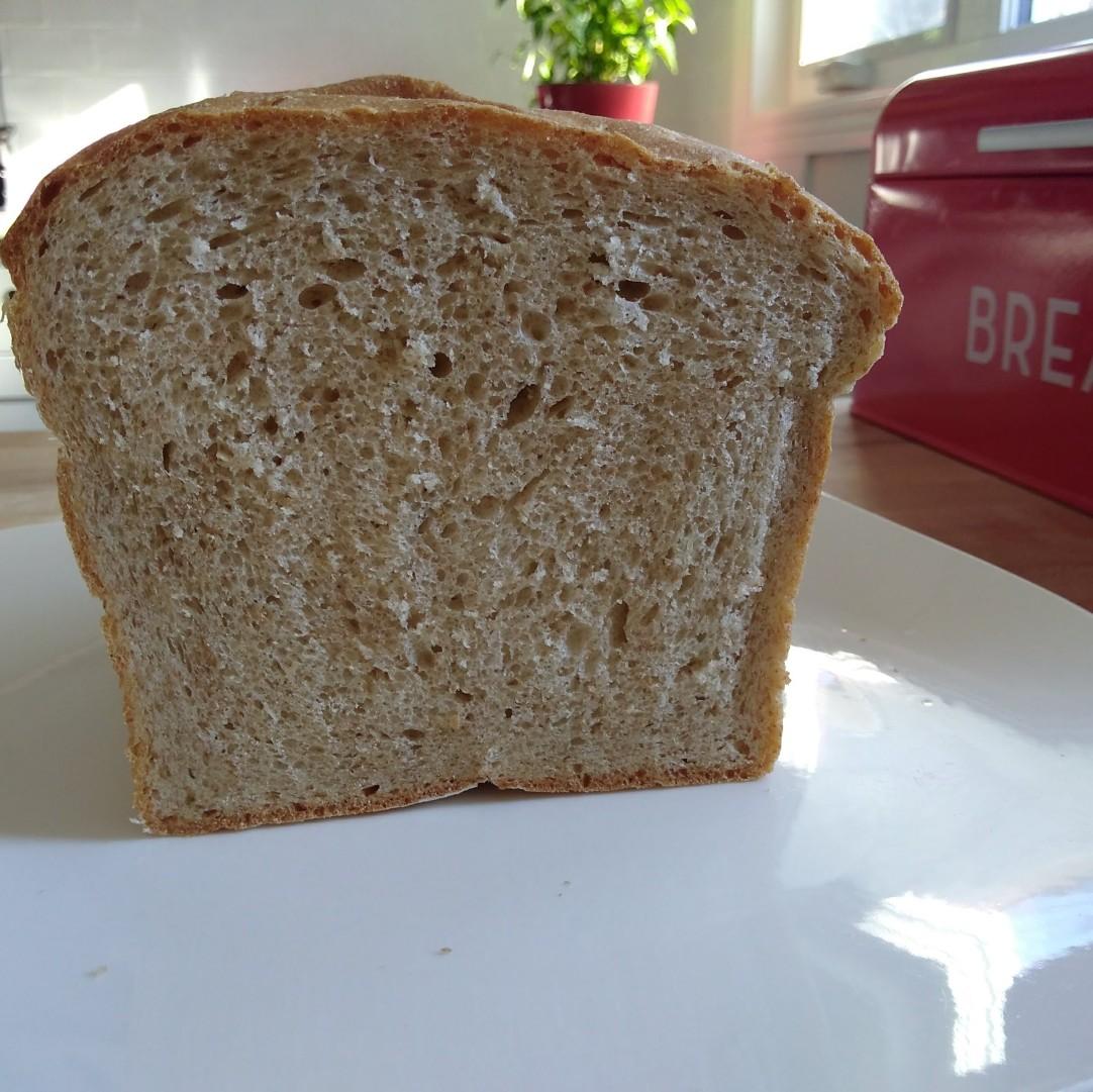 bread_texture